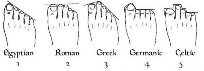 ancient foot types