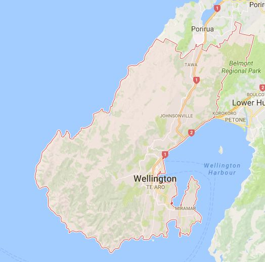 Podiatrists in Wellington