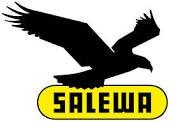Salewa Running Shoes