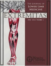 Extremitas