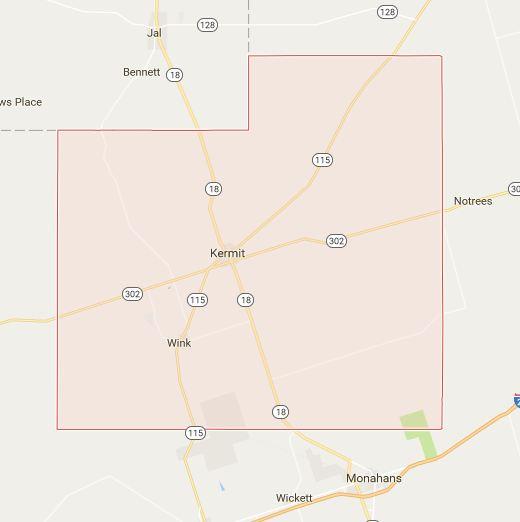 Podiatrists in Winkler County, Texas